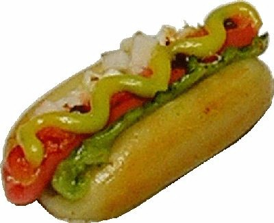 Dollhouse Miniature Hot Dog with Everything F110